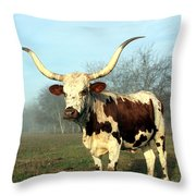 Texas Longhorn At Sunrise Throw Pillow