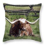 Texas Longhorn Bull At Rest Throw Pillow