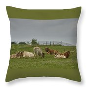 Texas Longhorns And Wildflowers Throw Pillow
