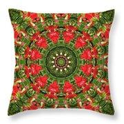 Texas Paintbrush Kaleidoscope Throw Pillow