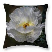 Texas Poppy Throw Pillow