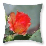 Texas Pricklypear Throw Pillow