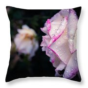 Texas Rain Drops Throw Pillow