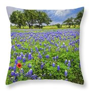 Texas Spring  Throw Pillow