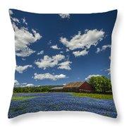 Texas Springtime Throw Pillow