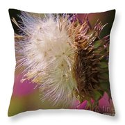 Texas Thistle 004 Throw Pillow