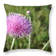 Texas Thistle Throw Pillow