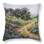 Texas Trail  Throw Pillow