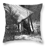Texas Winter Throw Pillow