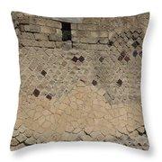 Textural Antiquities Herculaneum Wall One Throw Pillow