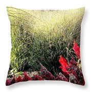Texture And Detail Throw Pillow