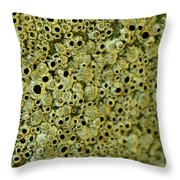 Texture From Another Planet1 Throw Pillow