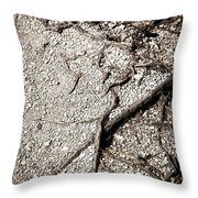 Texture With Root With Plenty Of Pebbles Throw Pillow