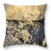 Texture101 Throw Pillow