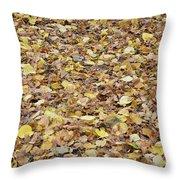 Texture104 Throw Pillow