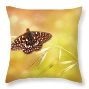 Textured Chalcedon Butterfly Throw Pillow