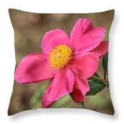 Textured Pink Peony Throw Pillow