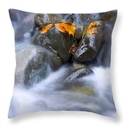 Textures Of Autumn Throw Pillow