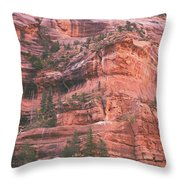 Textures Of Zion Throw Pillow