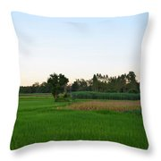 Thai Fields Throw Pillow