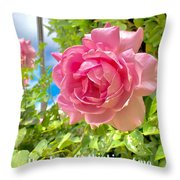 Thank You For Thinking Of Me- Rose Throw Pillow