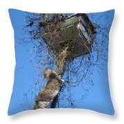 Thanksgiving Dinner Throw Pillow by David Sutter