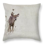 Thanksgiving Visitor Throw Pillow