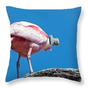 That Disapproving Look Throw Pillow