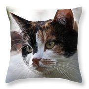 That Is Lolle Throw Pillow