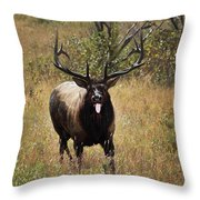 That Moment When Throw Pillow