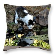 That My Reflection Throw Pillow