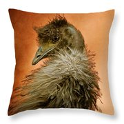 That Shy Come-hither Stare Throw Pillow