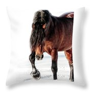 That Sultry Look Throw Pillow