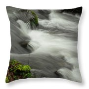 That View Of The Flow Throw Pillow