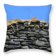 Thatched Cottage Gable Throw Pillow