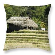 Thatched Shelter Throw Pillow