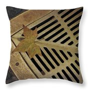 That's Just Grate Throw Pillow