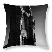 The Cathedral Wall Throw Pillow