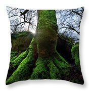 The Acteon Throw Pillow