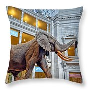 The African Bush Elephant In The Rotunda Of The National Museum Of Natural History Throw Pillow