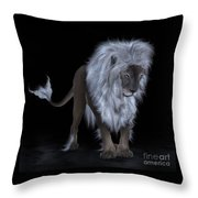 The Aging Of A Fairytale Throw Pillow