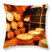 The Aging Room Throw Pillow
