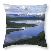 The Alaska Range Reflecting In A Lake Throw Pillow
