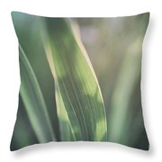 The Allotment Project - Sweetcorn Leaves Throw Pillow