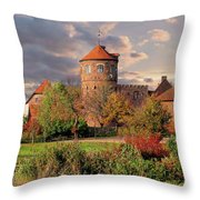 The Alte Burg Throw Pillow
