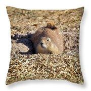 The Amazing Black-tailed Prairie Dog Throw Pillow