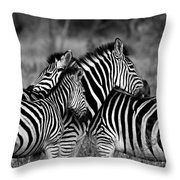 The Amazing Shot Of Zebra Throw Pillow