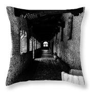 The Ancient Cloister 3 Throw Pillow