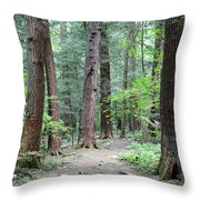 The Ancient Hemlock Forest Throw Pillow