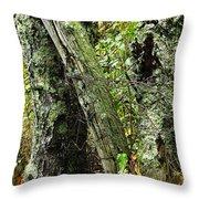 The Ancient Landmark Throw Pillow